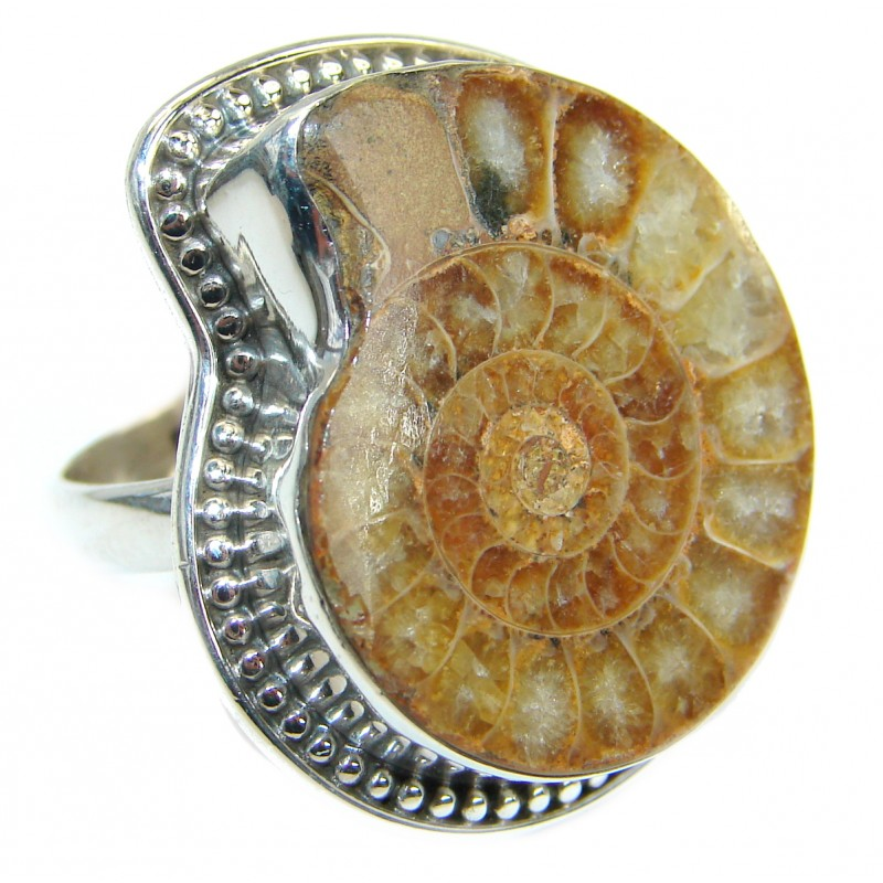 Stylish Brown Ammonite Fossil Sterling Silver Ring s. 9
