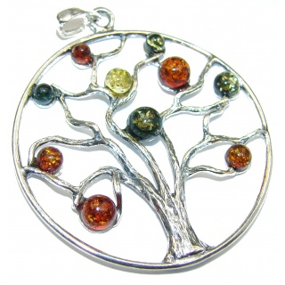 Big! Perfect Family Tree Baltic Polish Amber Sterling Silver Pendant