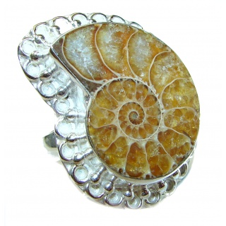 Stylish Brown Ammonite Fossil Sterling Silver Ring s. 11 1/4