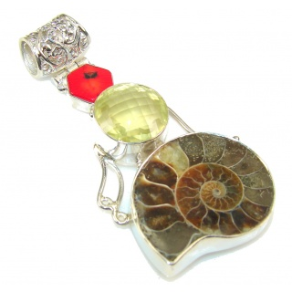 Excellent Ammonite Fossil Sterling Silver Pendant