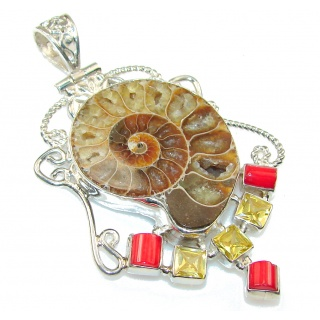 Amazing Ammonite Fossil Sterling Silver Pendant