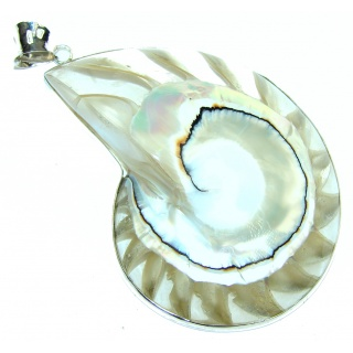 Big! Natural Nautilus Brown Ocean Shell 40GRAMS Strling Silver Pendant